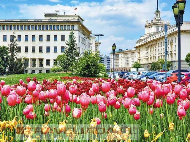 Bułgaria i Rumunia - Siedmiogród i Góry Bałkanów
