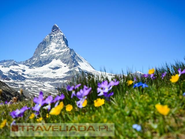 Szwajcaria - górska przygoda z czekoladą