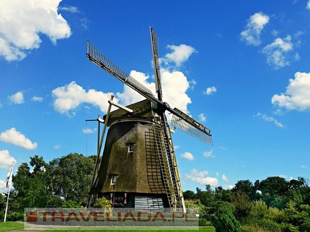 Wycieczka do Holandii na Paradę Kwiatową Express